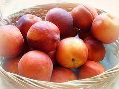 Fruit of Peace