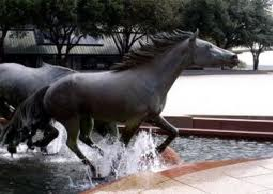Mustangs Irving